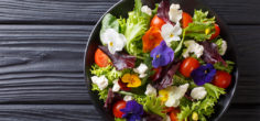 6 Tips for Including Floral Flavors in Your Meals